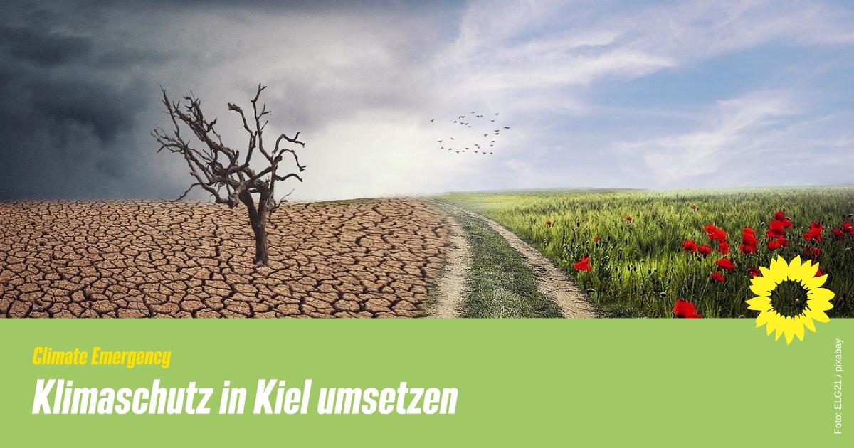 Climate Emergency: Kiel braucht mehr als eine Klimaschutzbeauftragte